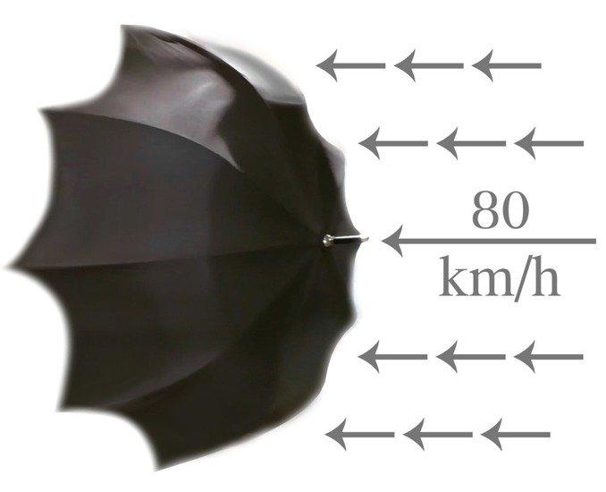 XXL Umbrella Automatic Open & Close UXL-CZ87